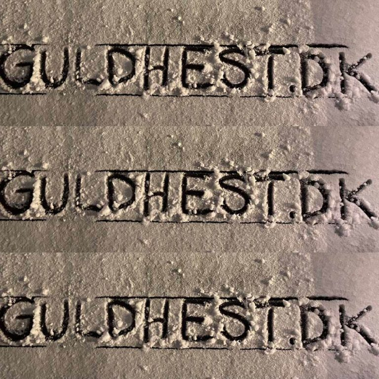 Guldhest i sand