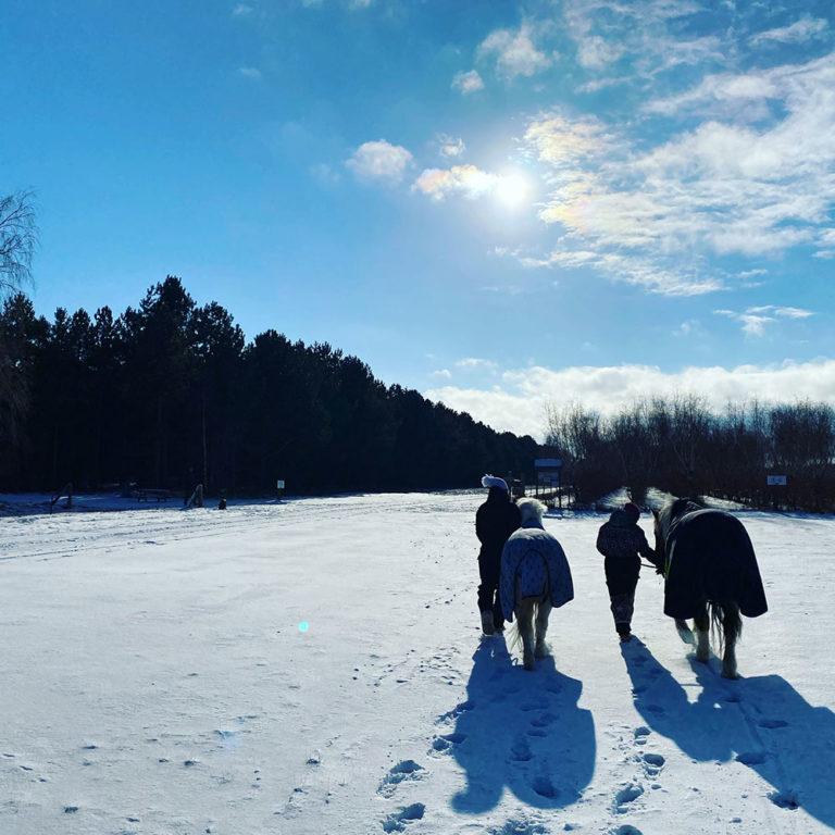 Skøn vintertur