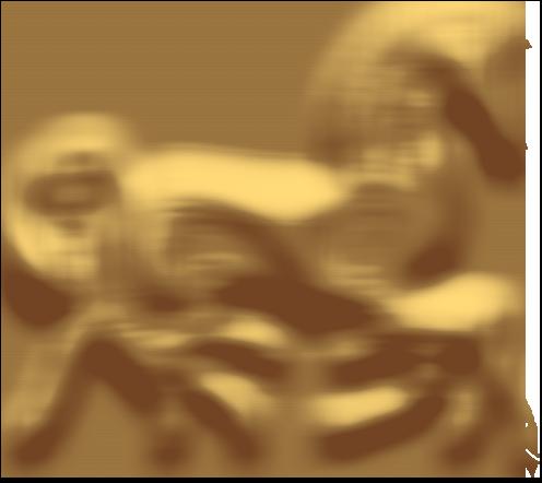 Turridning på Islandske heste